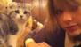 Taylor Swift regresa a su casa y Meredith no está nada feliz