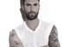 Adam Levine y Maroon 5 sorprenden a un fan