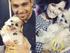 Demi Lovato: ¿se casó en secreto?