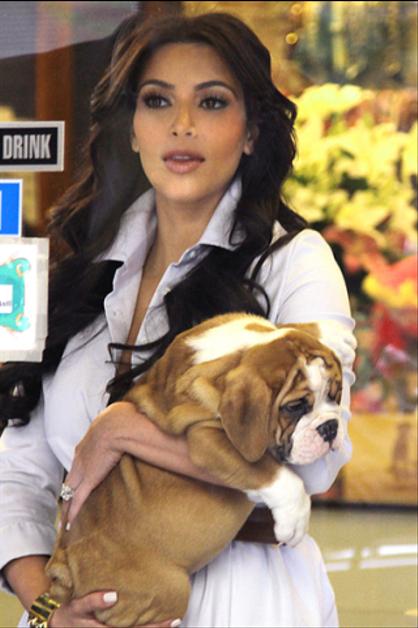 Las celebridades y sus mascotas - KIM KARDASHIAN. ¡Mira a los Jonas, Katy Perry, Britney Spears y más con sus animalitos! ¿Nos cuentas cuál te parece más tierno?