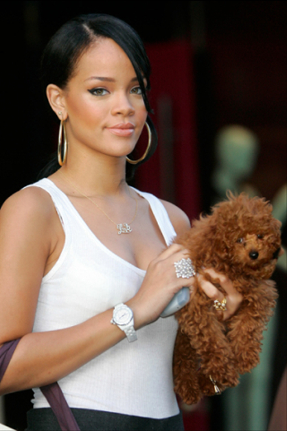 Las celebridades y sus mascotas - RIHANNA. Mira a los Jonas, Katy Perry, Britney Spears y ms con sus animalitos! Nos cuentas cul te parece ms tierno?