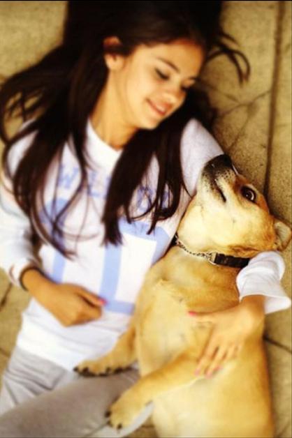 Las celebridades y sus mascotas - SELENA GOMEZ. ¡Mira a los Jonas, Katy Perry, Britney Spears y más con sus animalitos! ¿Nos cuentas cuál te parece más tierno?