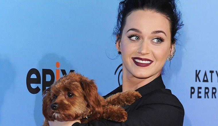 Katy Perry se deja el pelo negro por luto