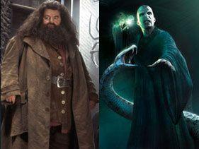 Batalla H: Rubeus Hagrid vs. Voldemort