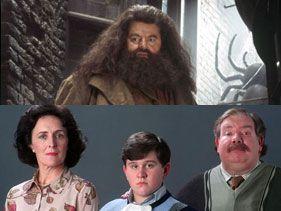 La Copa Harry Potter, Batalla 15: Rubeus Hagrid vs. Los Dursley