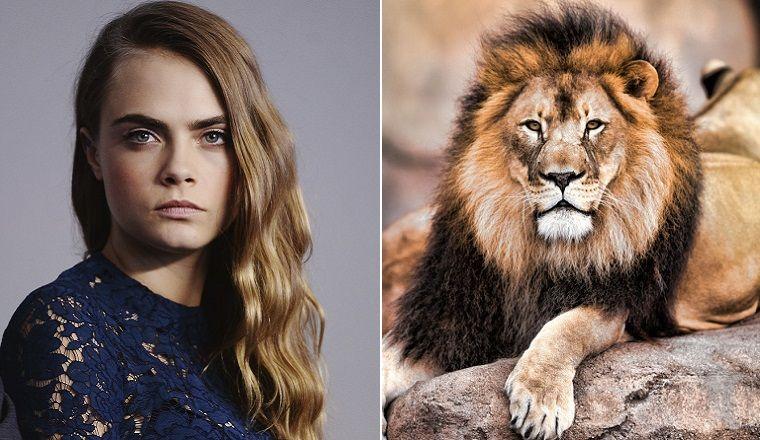 Los famosos reaccionan ante el asesinato de Cecil, el rey león de Zimbabwe