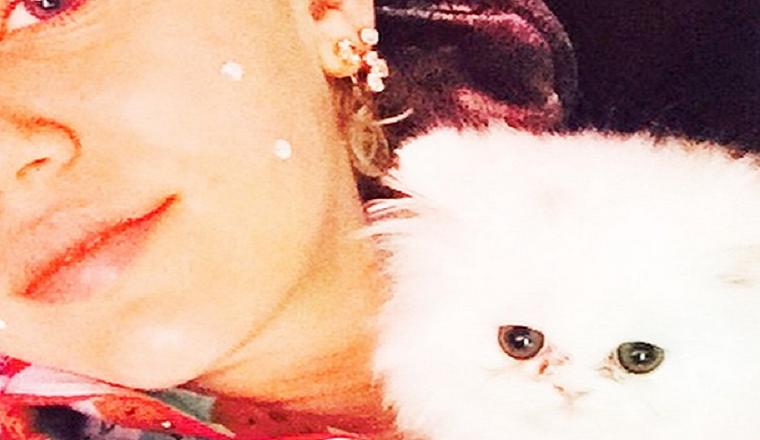 Miley Cyrus tiene nueva mascota... ¡y es lo más adorable que hemos visto!